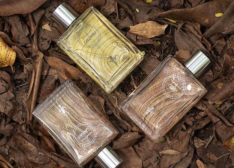 Nova coleção de fragrâncias da Yes! Cosmetics aposta nas madeiras